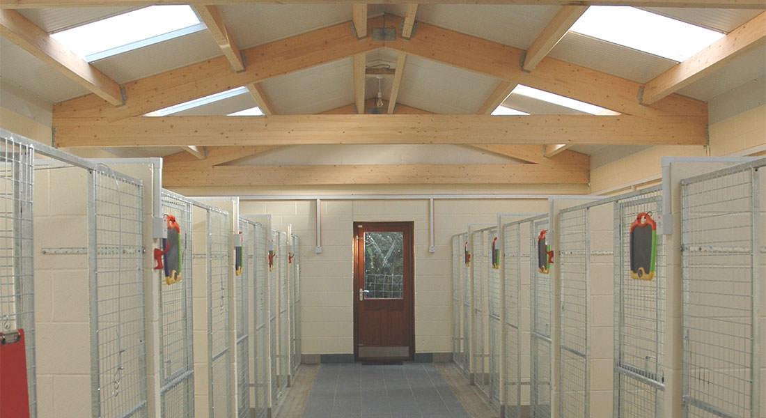 Sunnyside Suites Hazel Corner Dog Hotel Luxury Dog